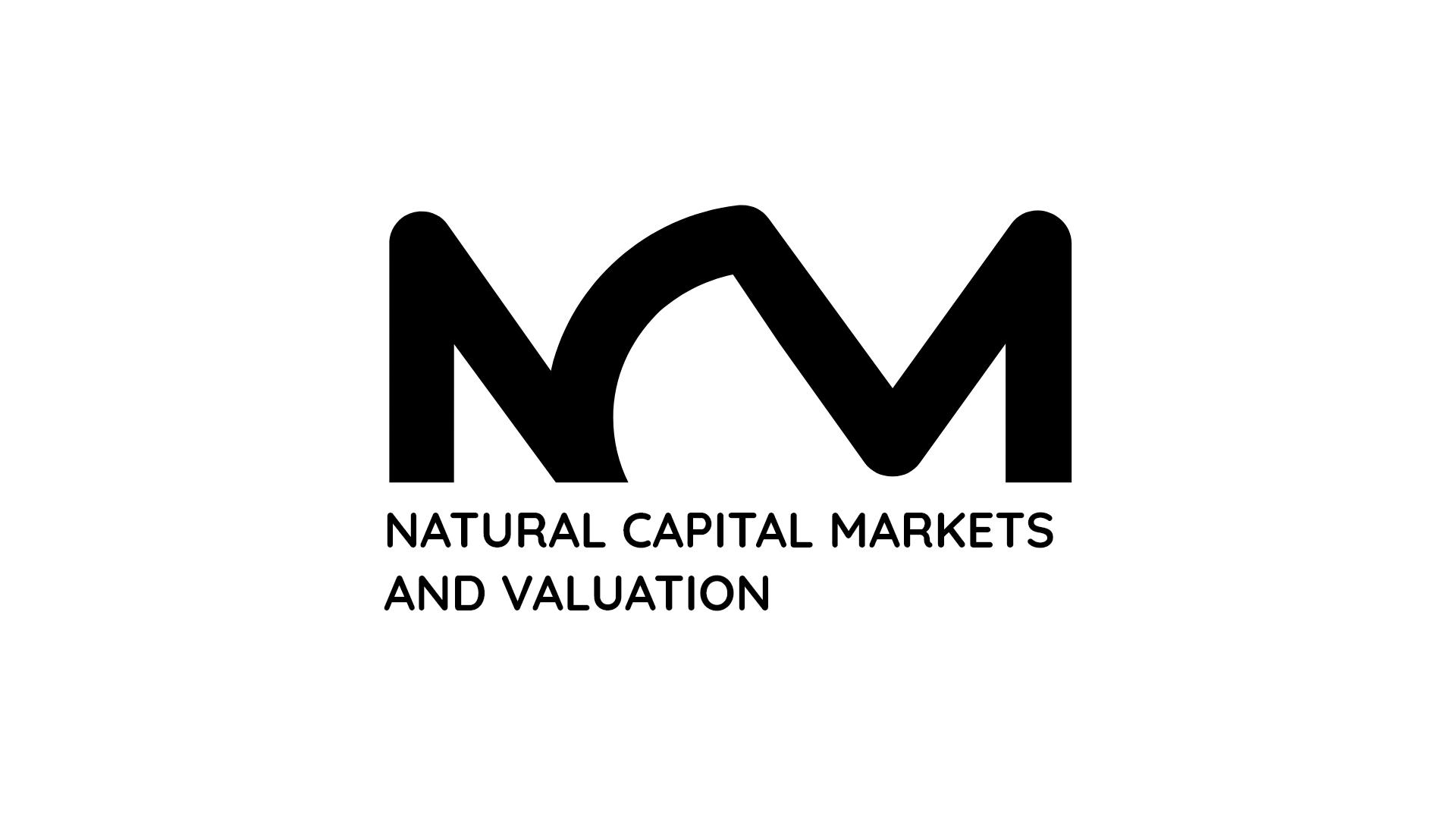 Logo Natural Capital Markets and Valuation
